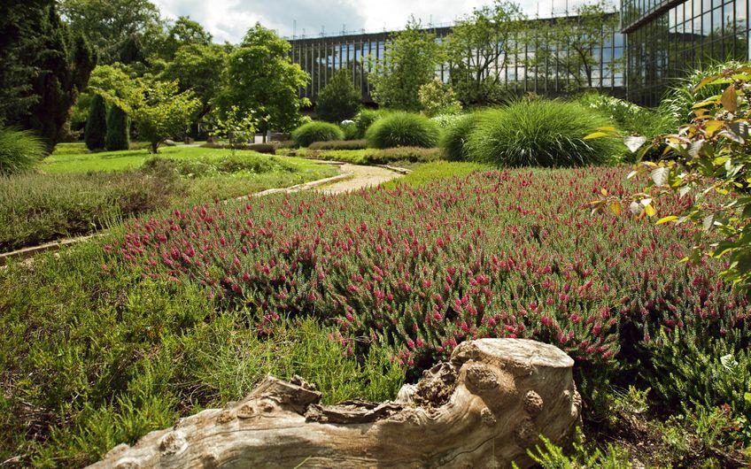 Die größten Garten- und Landschaftsbauer am Niederrhein