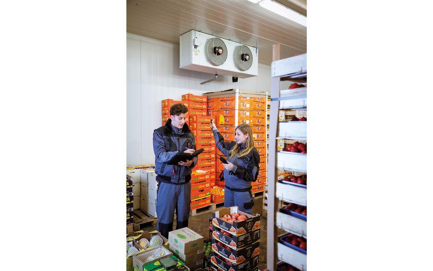 Leicht verderbliche Ware benötigt kühle Lagerbedingungen