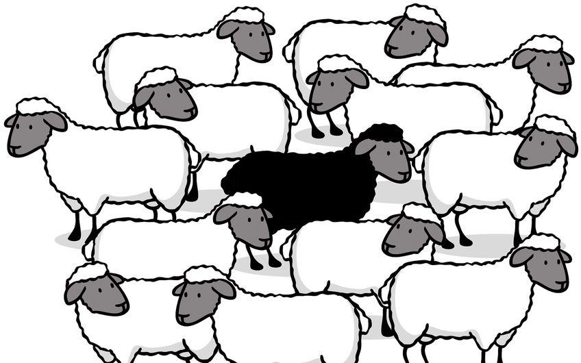 Wie erkennt man Schwarze Schafe? Möchten Unternehmer ihr Privatvermögen anlegen, so ist eine gute Vorbereitung geboten. Schließlich ist Finanzberatung ein sensibles Thema.