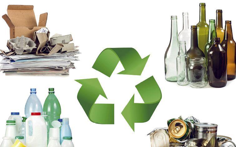 Verpackungsbranche: Auf dem grünen Zweig