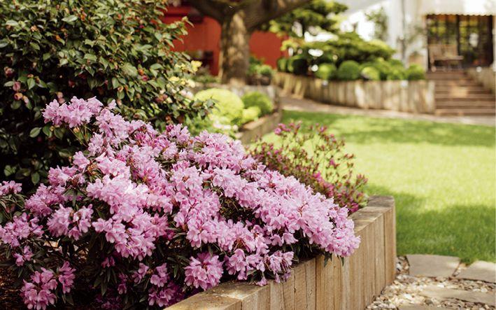 Garten- und Landschaftsbau Jonas: Wenn Gartenträume Wirklichkeit werden