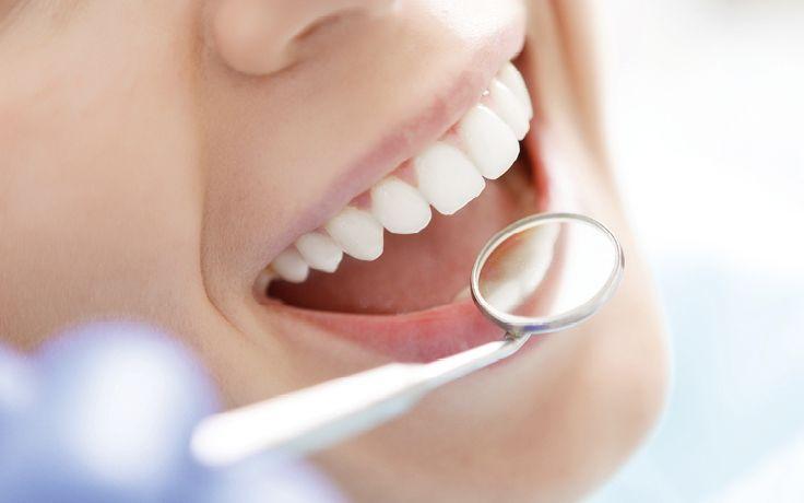 Mundgesundheit kontinuierlich verbessert