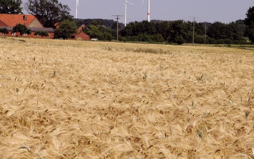 Nachhaltige Energiegewinnung im Norden des Kreises Warendorf (Foto: Kreis Warendorf)