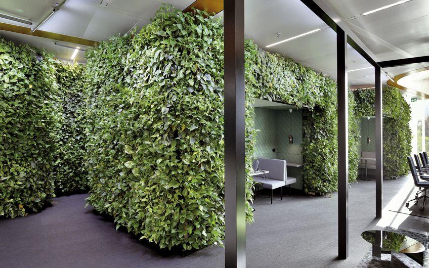 akzente raumbegrünung /AIRY GreenTech: Pflanzen reinigen die Luft