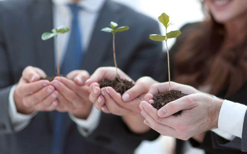 Umweltschutz: Einfach mal anfangen
