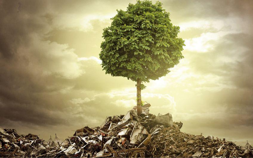 Entsorgungs- und Recyclingbranche: Kreis. Lauf. Wirtschaft.