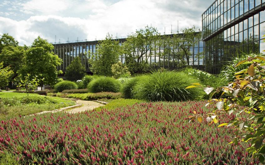 Die größten Garten- und Landschaftsbauer in NRW